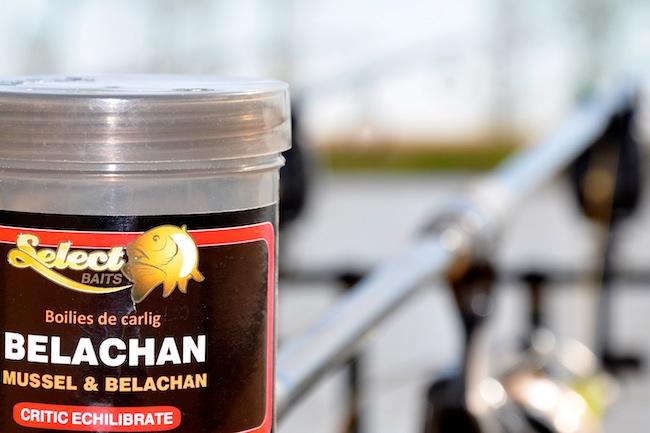 Boiliesuri Belachan in dip