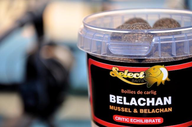 Boiliesuri de carlig Belachan
