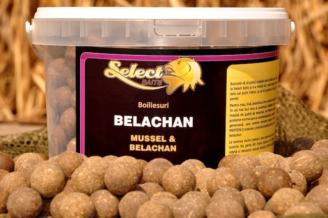 Select Baits Belachan