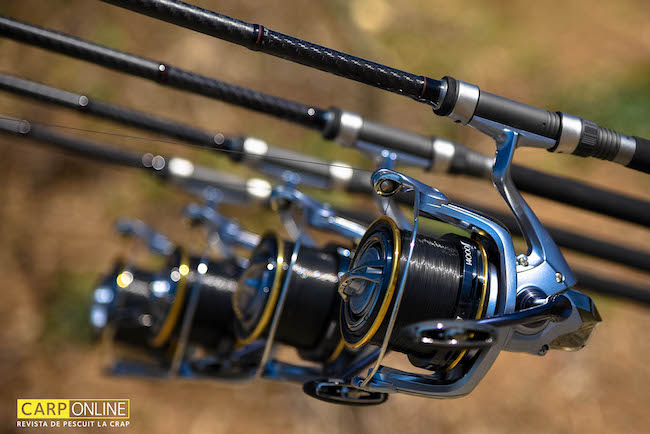 Shimano_Tribal_TX7_4